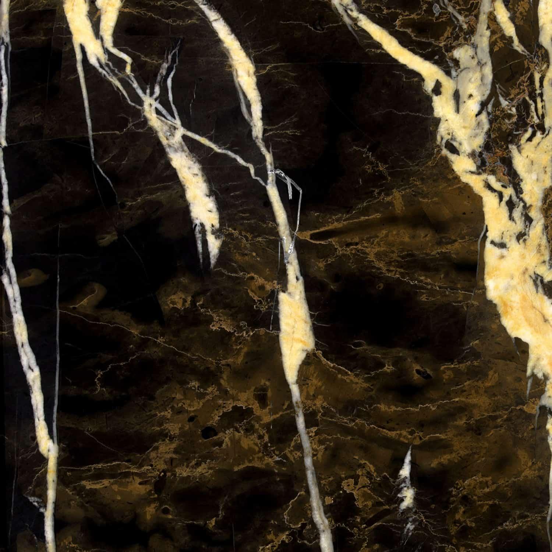 Noir St Laurent The Stone Collection